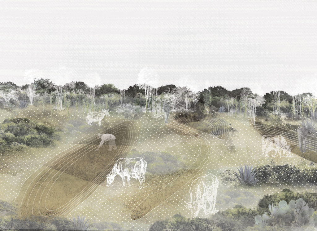 Rendering showing cows grazing