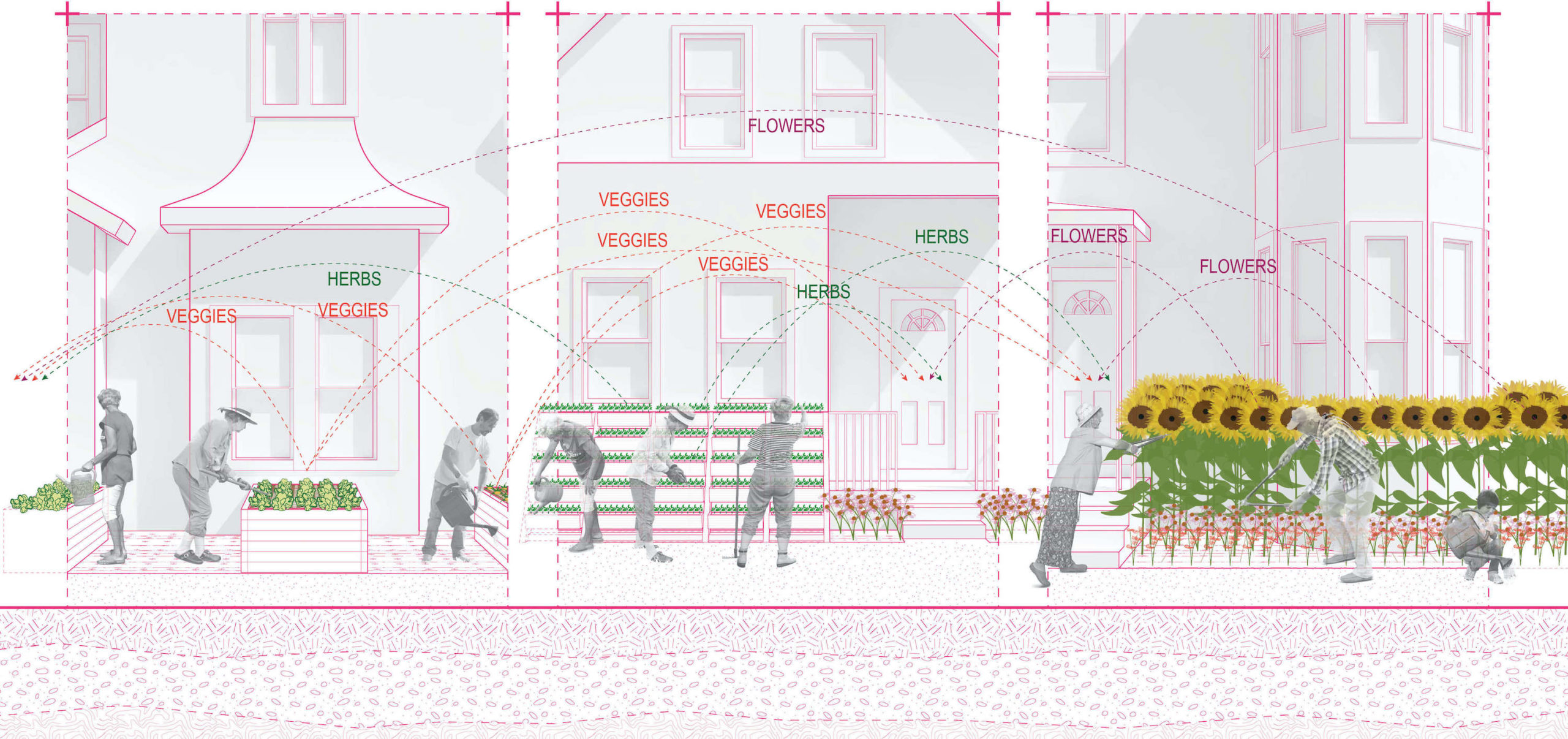 rendering showing herb, veggie, and flower sites.