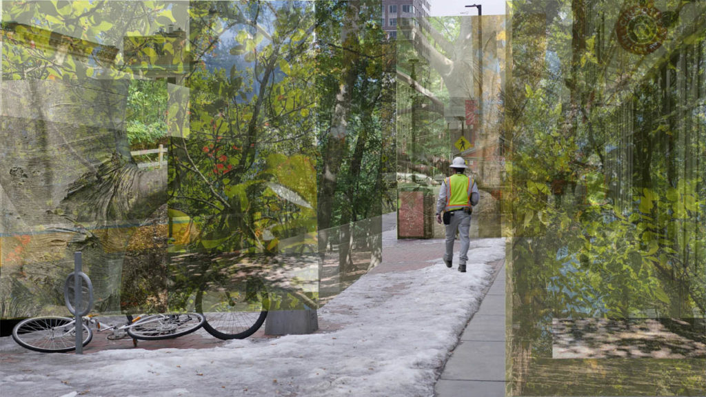 Rendering of man walking in the city with an overlay of various ecologies on either side