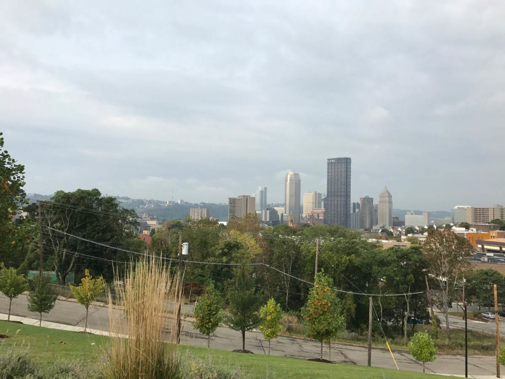 Exterior view of city from park