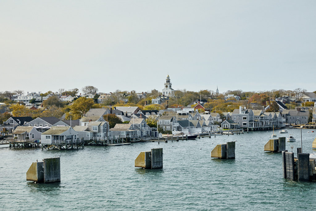 Town with single family houses in front of water
