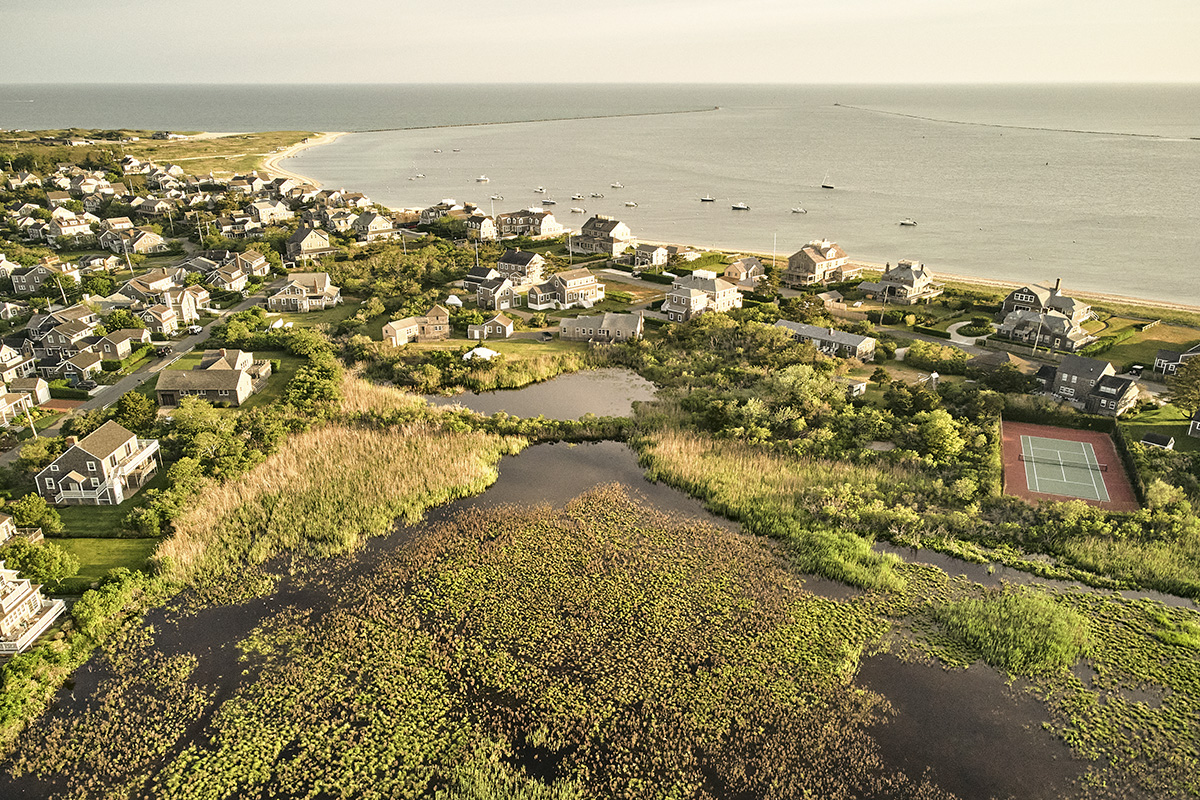 Town with lots of vegetation in front of the ocean